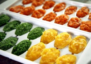 Pureed Vegetables in ice trays. These are great to have for soups, smoothies. If you have a baby ready for baby food try these instead of purchasing baby food at the store...at least with fresh vegetables you know what ingredients are in your pureed vegetables.